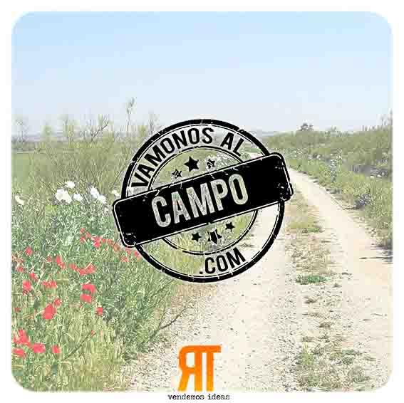 VamonosAlCampo